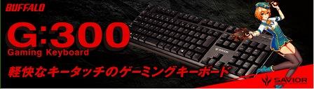 G300.jpg