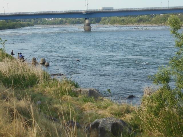 DSCN43010430大渡橋上流左岸今朝の釣りの様子.jpg