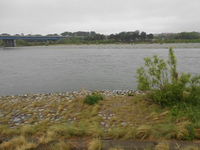 DSCN43560508大渡橋上流.jpg