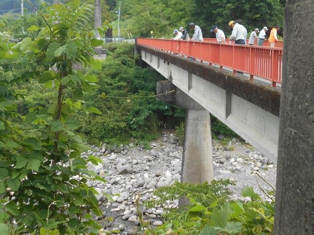 張り替え20180607DSCN4518渡良瀬川東橋アユの放流の様子ウの追い払い用のテープ