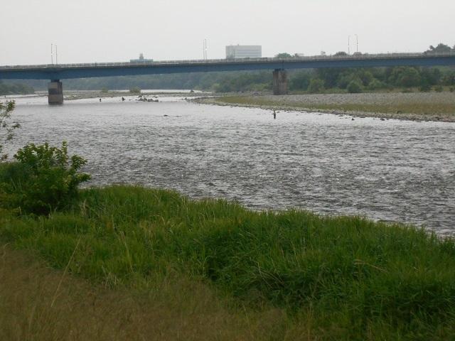 20180610大渡橋左岸上流より下流を写すDSCN4538
