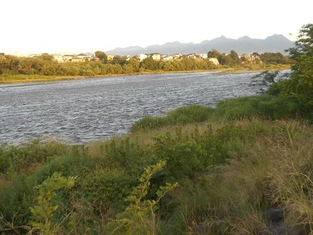 20180701大渡橋左岸上流の写真DSCN4654.jpg