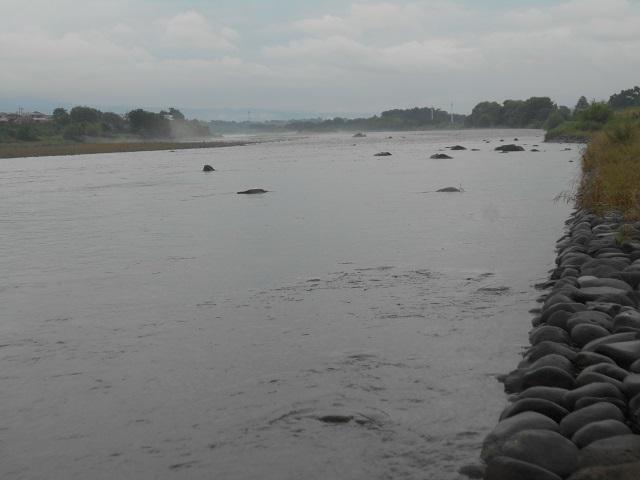 20180708大渡橋左岸上流の写真DSCN4691.jpg