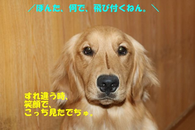 IMG_0718.jpg
