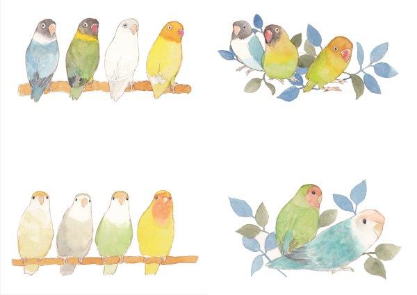 2018_鳥が好きだ_02