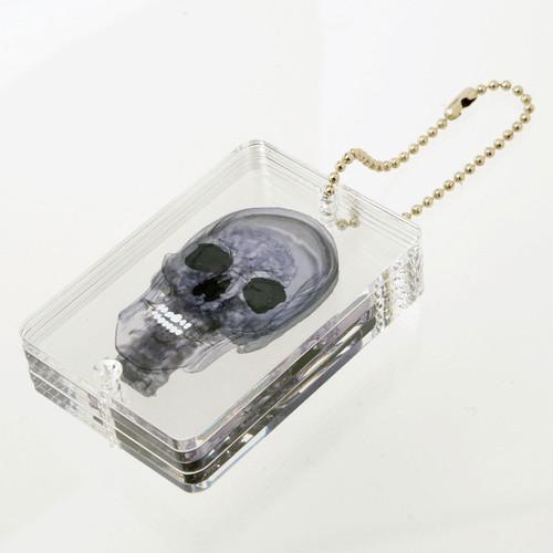 2018_3D透明標本_02