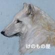 2018_けのもの屋_logo
