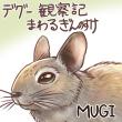 2018_デグー観察記~まわるぎんのすけ_logo