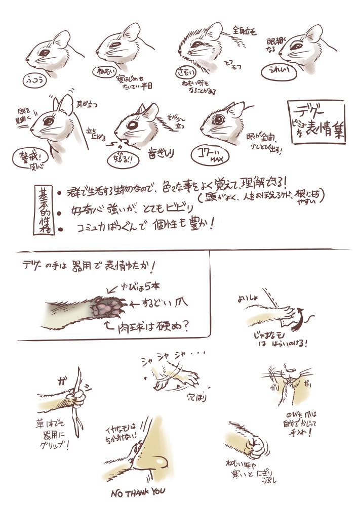 2018_デグー観察記~まわるぎんのすけ_02