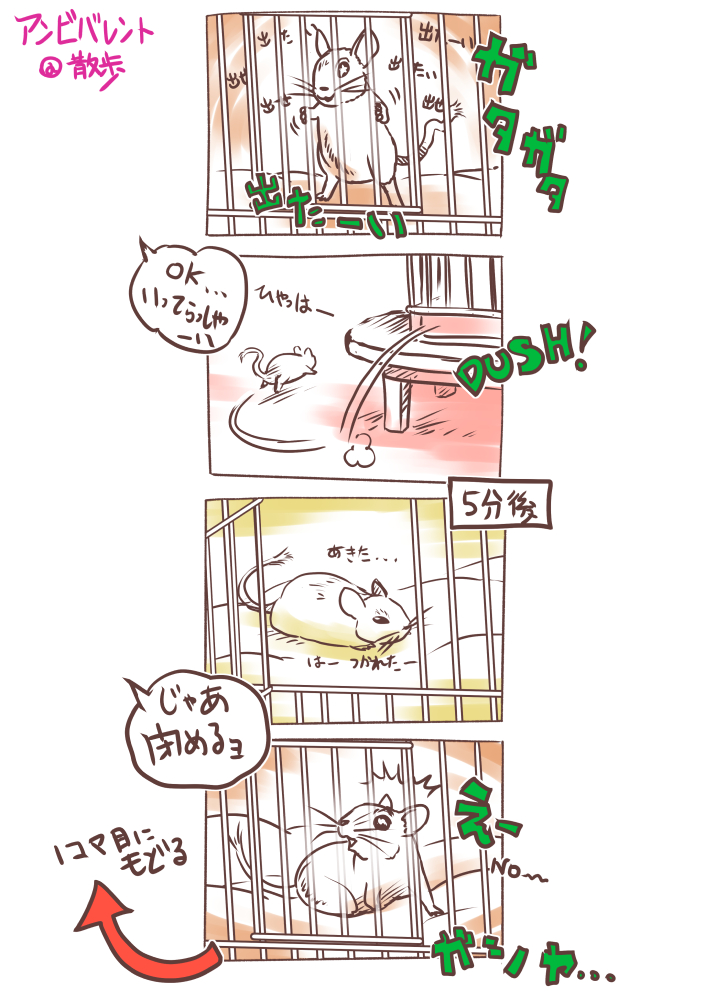 2018_デグー観察記~まわるぎんのすけ_04