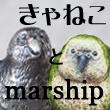2018_きゃねことmarship_logo