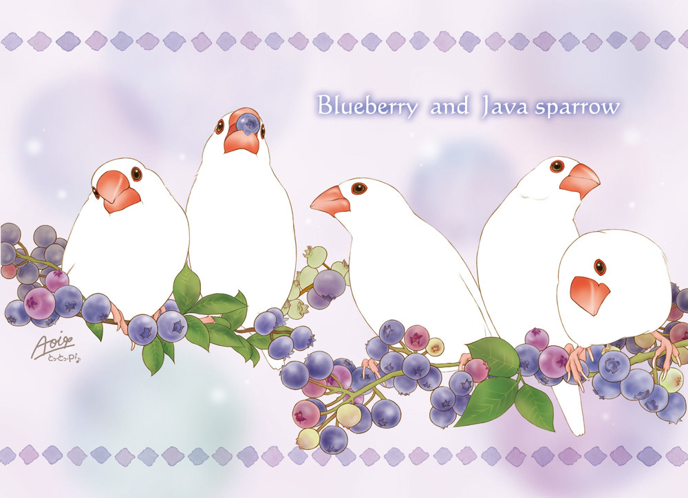 2018_花咲文鳥_05