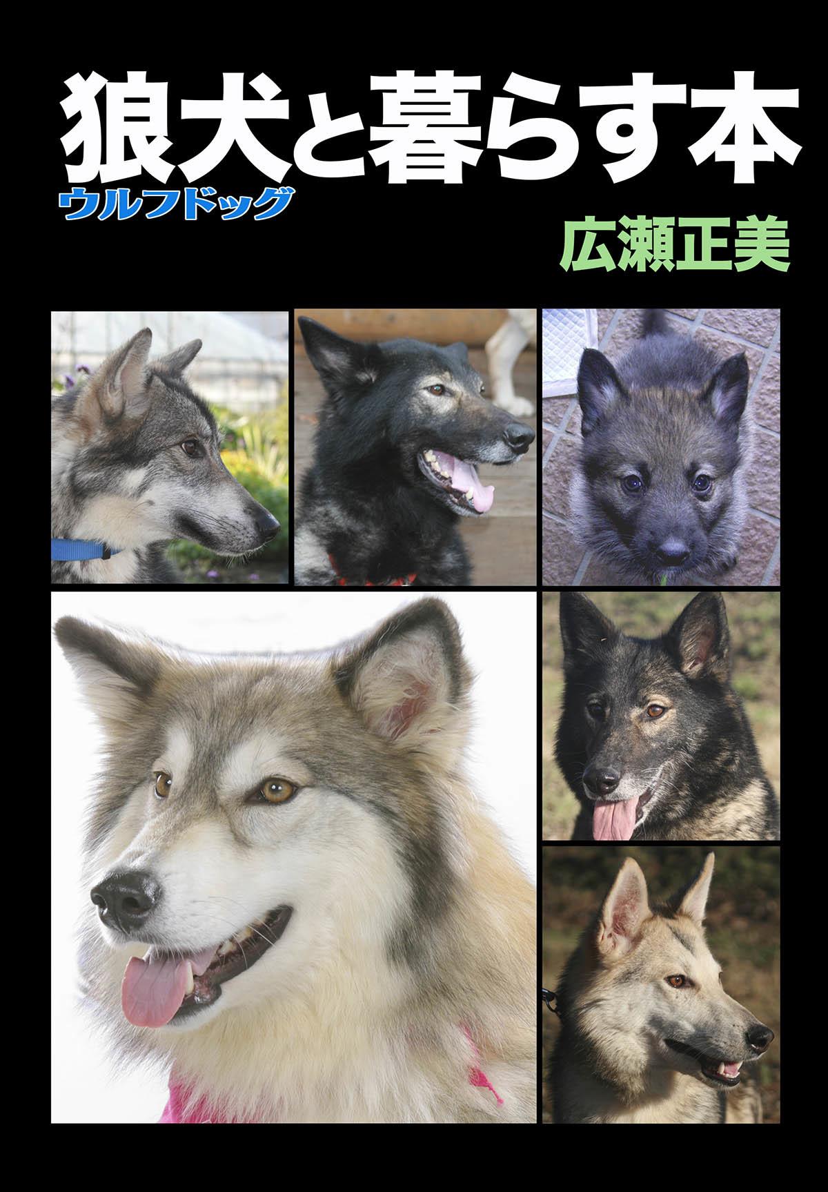 2018_工房斑狼_07