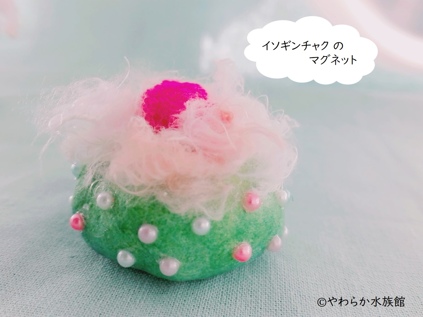 2018_やわらか水族館_06