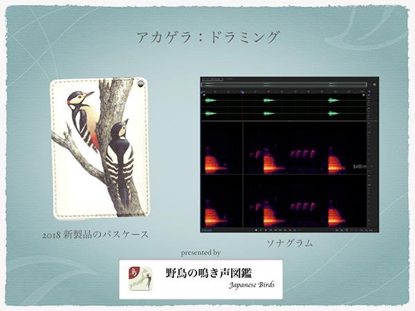 2018_ガクタメ_いきもの細密画アートグッズ_02