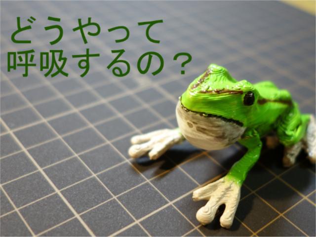 2018_ガクタメ_かえる盛_01