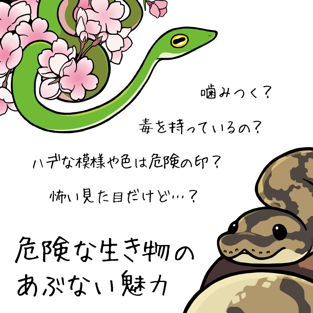 2018_ガクタメ_丼_01