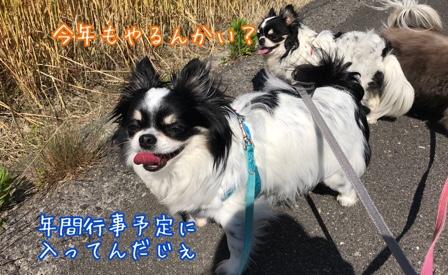 fc2blog_201805282021095fe.jpg