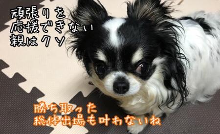 fc2blog_20180529230949de9.jpg