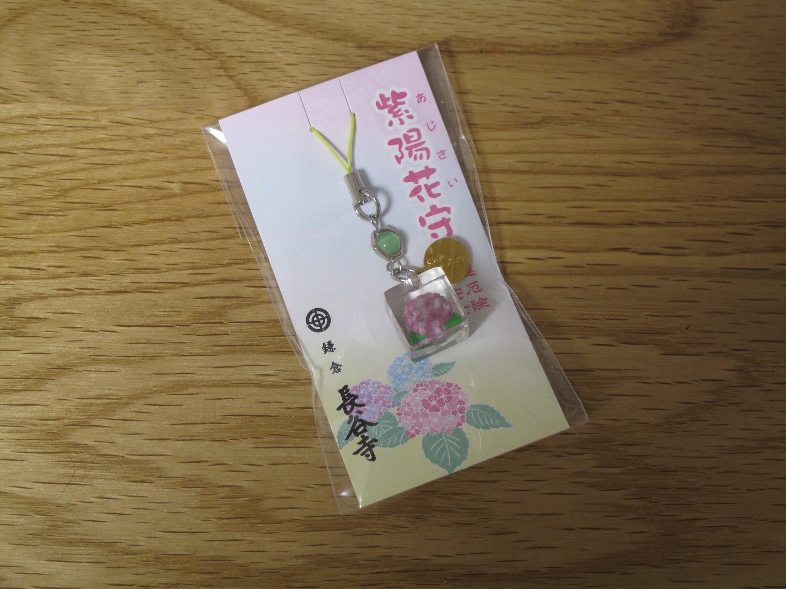 鎌倉紫陽花41