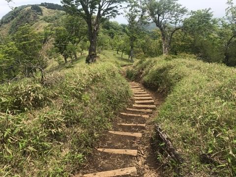 丹沢山への木道