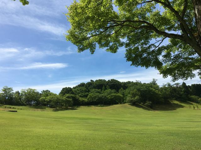 20180701森林公園散歩3