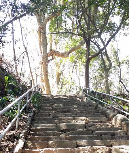 雄島 階段