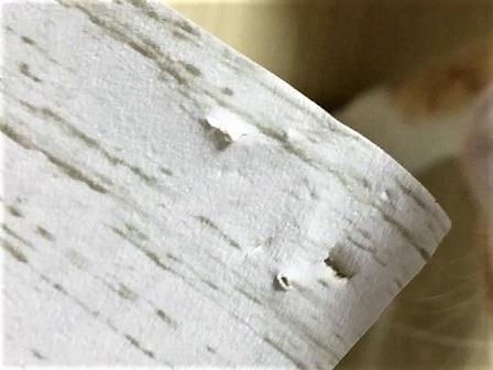 壁紙実験2