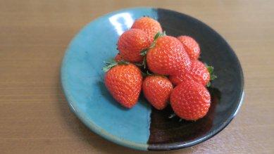 収穫した苺on牛ノ戸焼皿