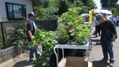 福島の盆栽園さん