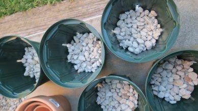 鉢底石(大粒軽石、鉢底から3cm)