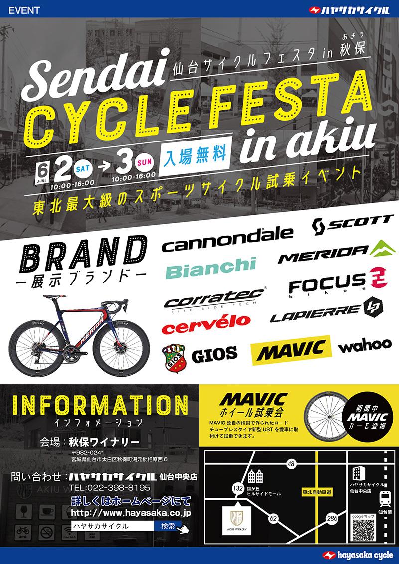 cyclefesta_2018.jpg