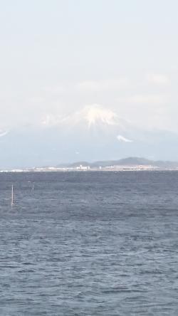 宍道湖から見た大山