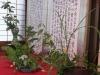 平成30年5月山の花をうつす・花をいける