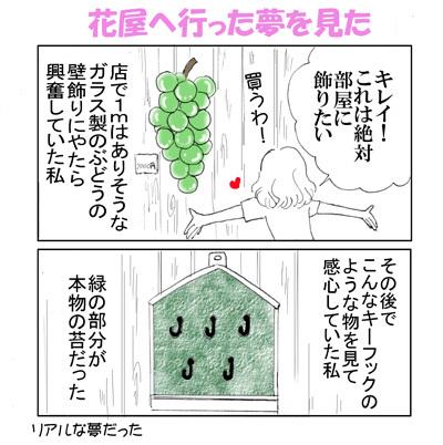 konnayume1--400.jpg