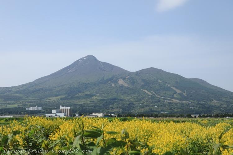 7819 会津磐梯山ーSN