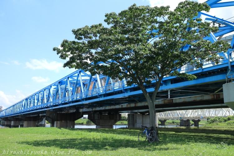 8538 荒川サイクリングロードーSN