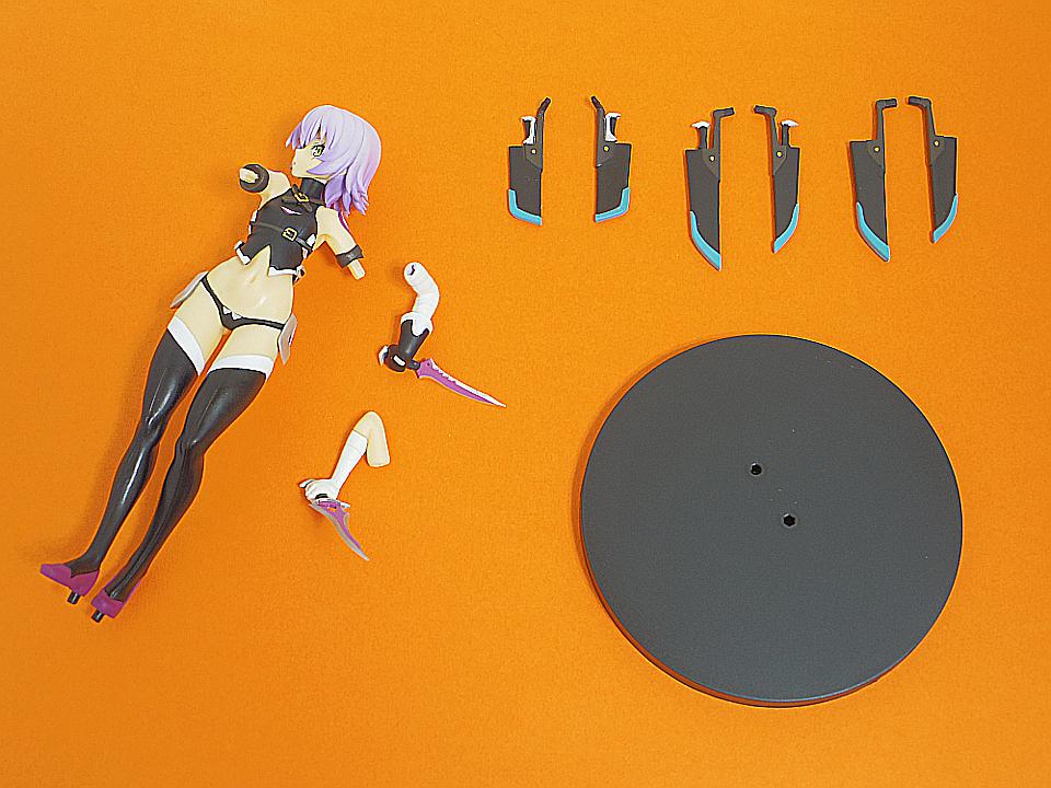 タイトー Fate 黒のアサシン1