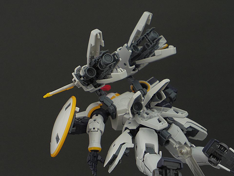 RG トールギス79