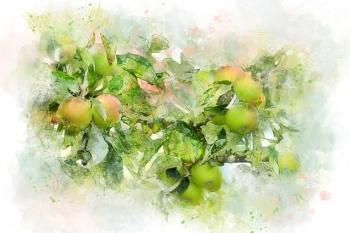 リンゴの木 サードアイ朱雀