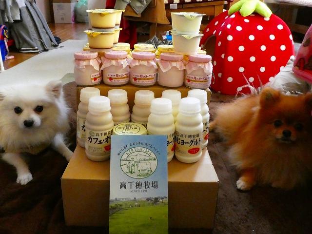 20180121ポンころ乳製品02