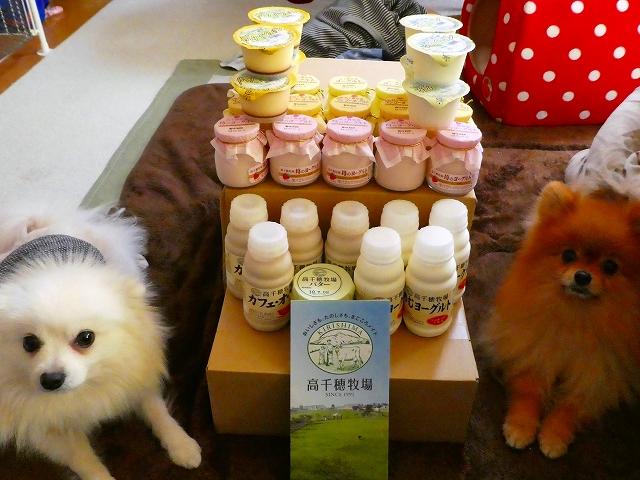 20180121ポンころ乳製品03