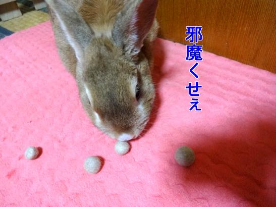 福毛ボール3
