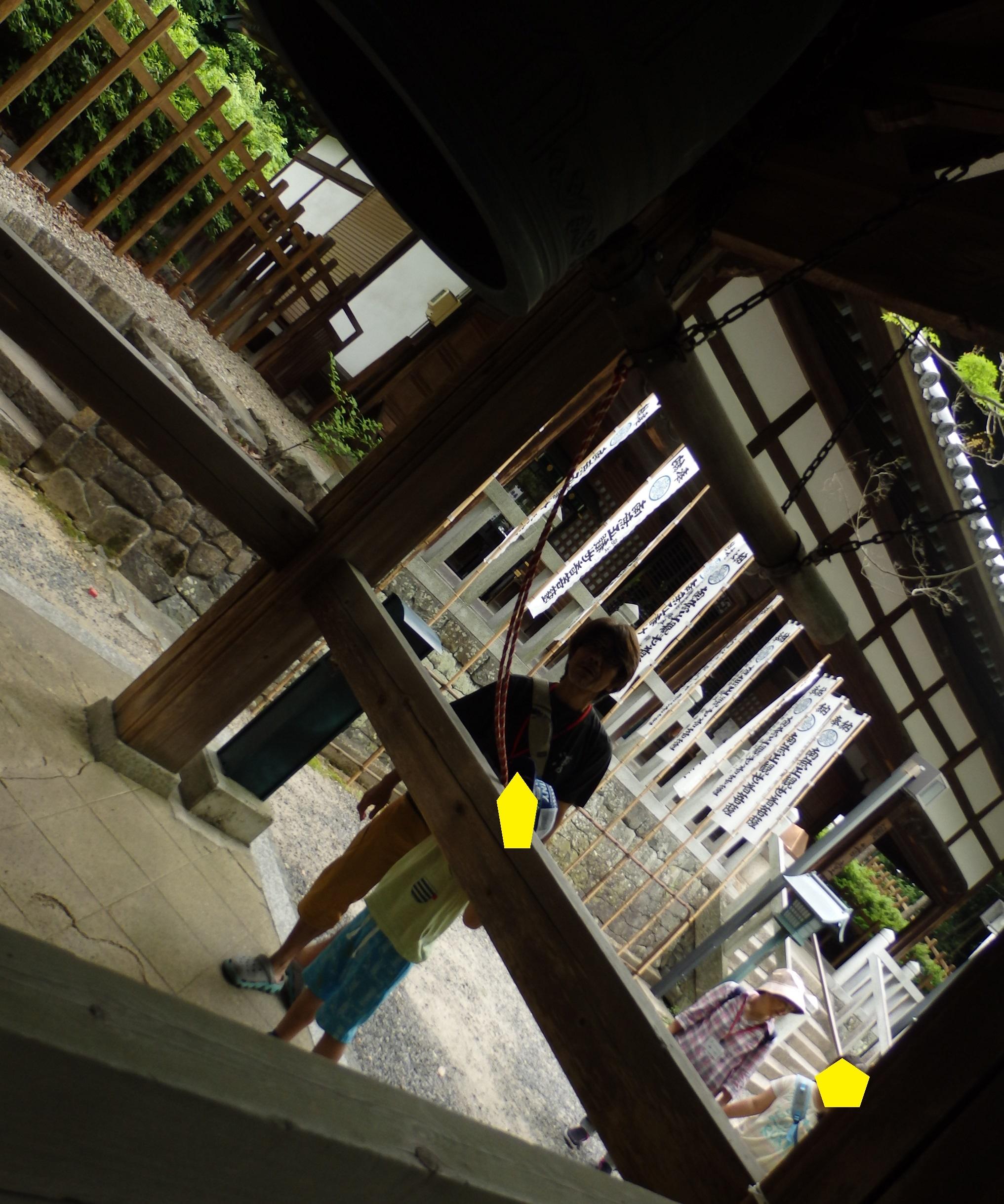 P5261178.jpg