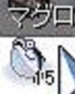 マグロ?04
