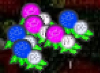 紫陽花アイコン
