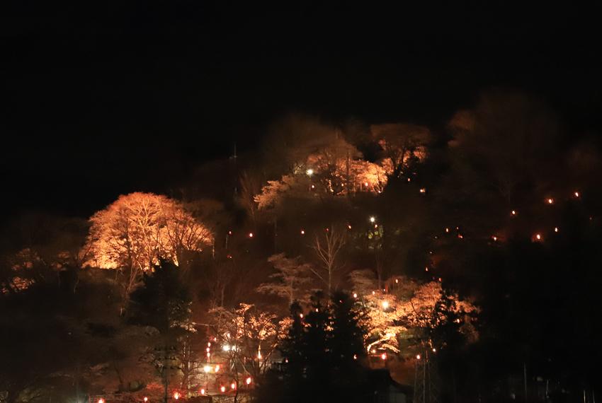 20180413釣山桜ライトアップスタート