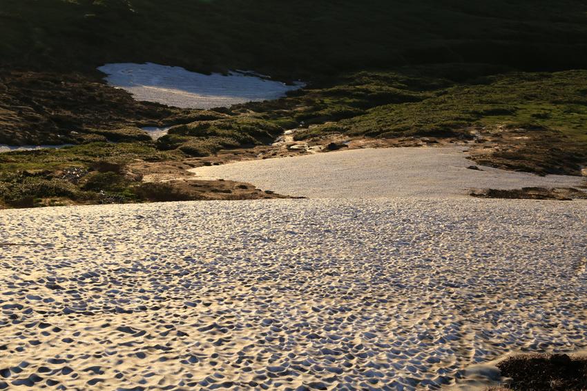 20180623山頂直下の残雪