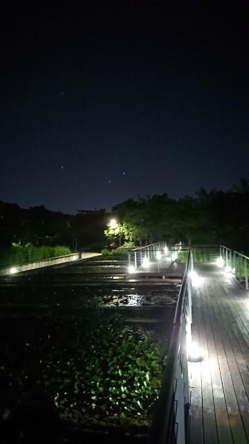 sonyudo002.jpg