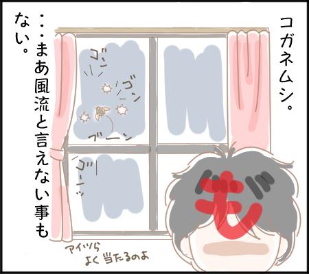 窓を叩く音3